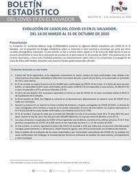 Portada_Boletín_20.jpg